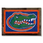 Florida Gators Wall Art, Rustic Metal Sign, Optional Rustic Wood Frame, College Teams, Mascots, and Sports, Free Shipping