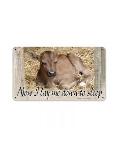 Baby Calf, Home and Garden, Metal Sign, 14 X 8 Inches