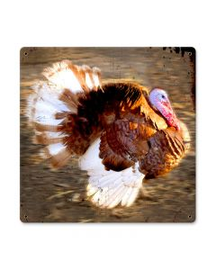 Running Turkey, Home and Garden, Metal Sign, 12 X 12 Inches