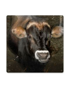 Cow Face, Home and Garden, Metal Sign, 12 X 12 Inches