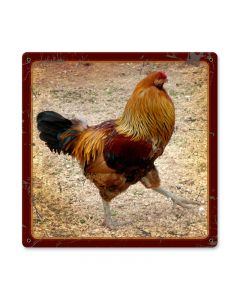 Rooster, Home and Garden, Metal Sign, 12 X 12 Inches