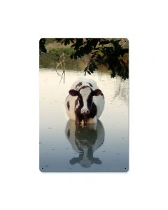 Cow in Water, Home and Garden, Metal Sign, 18 X 12 Inches