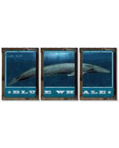 Blue Whale, METAL Triptych, Optional Rustic Wood Frame, Whale Watching, Wall Art, Ocean, Nautical