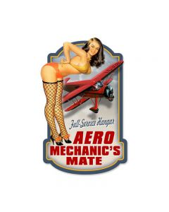 Aero Mechanics, Aviation, Custom Metal Shape, 17 X 10 Inches