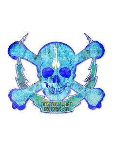 Skull Bolt Destroy What Destroys You, Man Cave, Plasma, 19 X 16 Inches