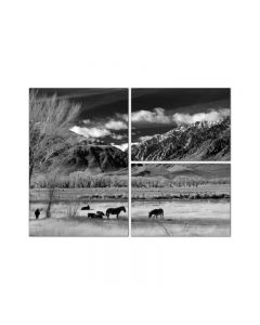 Bishop Valley Triptych, Home and Garden, Triptych, 32 X 24 Inches