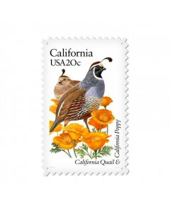 California Quail, Home and Garden, Custom Metal Shape, 15 X 24 Inches